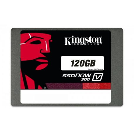 kingston-ssdnow-v300-120gb-ssd-1.jpg