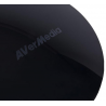 AverMedia SonicBlast GS335
